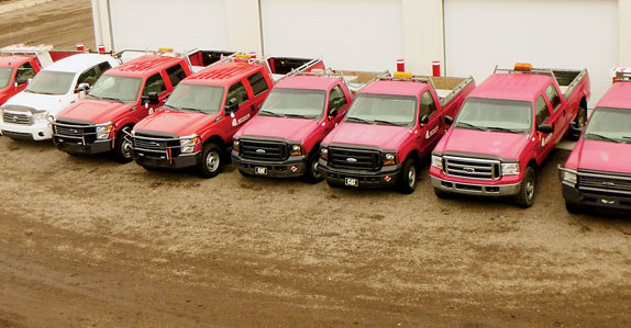 Line-up of pick-up trucks